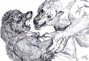 Will vs Furiadoro sketch by FuriarossaAndMimma