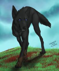 Commission - Edgar