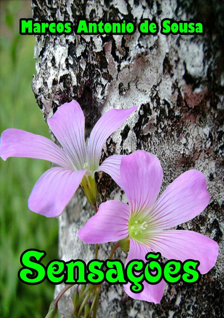 Capa do livro Sensacoes by marcos941