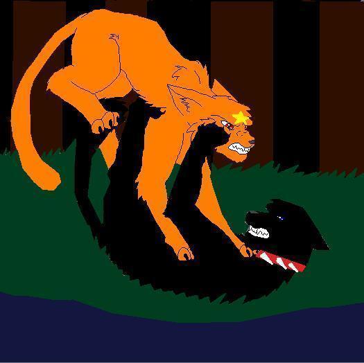 Warrior Cats Kit To Leader Bloodclan: Firestar Vs. Scourge By Demonstardust On DeviantArt