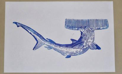 requin peigne by kadah