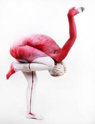 Flamingo Body Painting