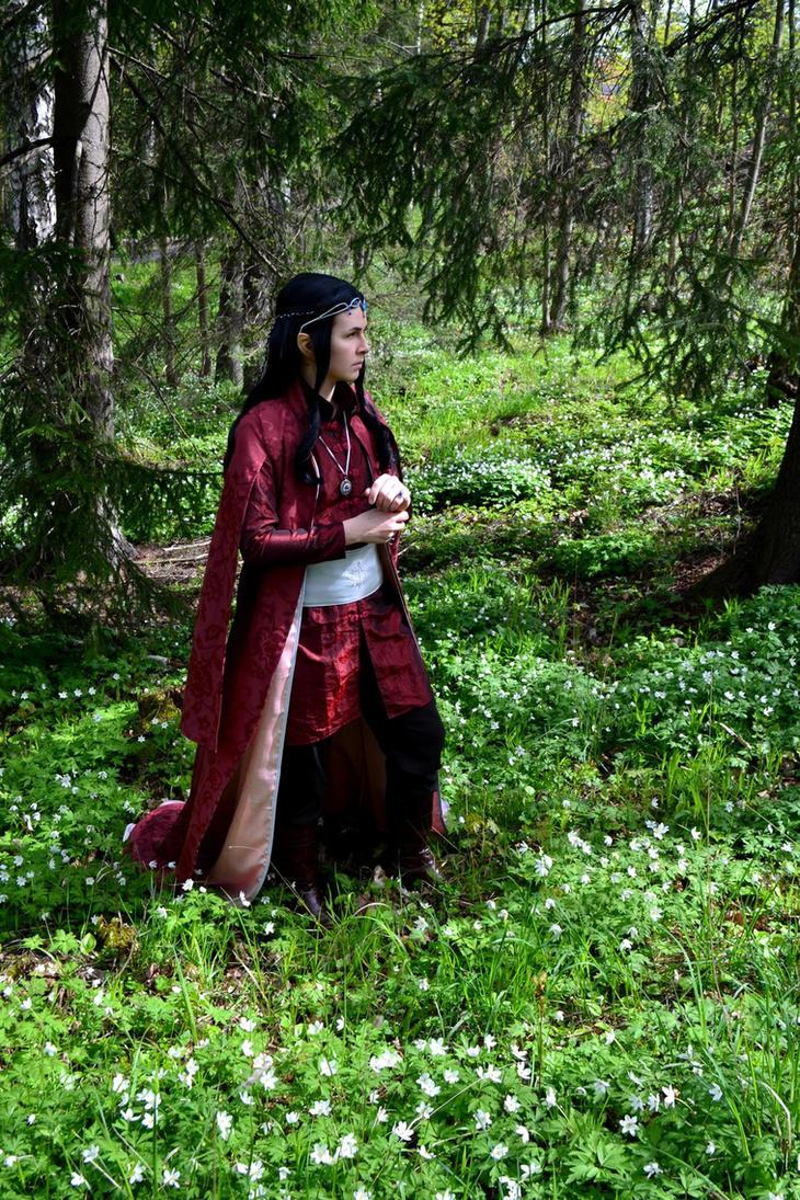 Silmarillion - Selfwilled by RiKyo5