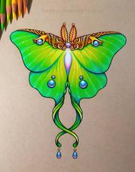 Luna Moth by dannii-jo