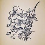 Sketch #1 by Arat89