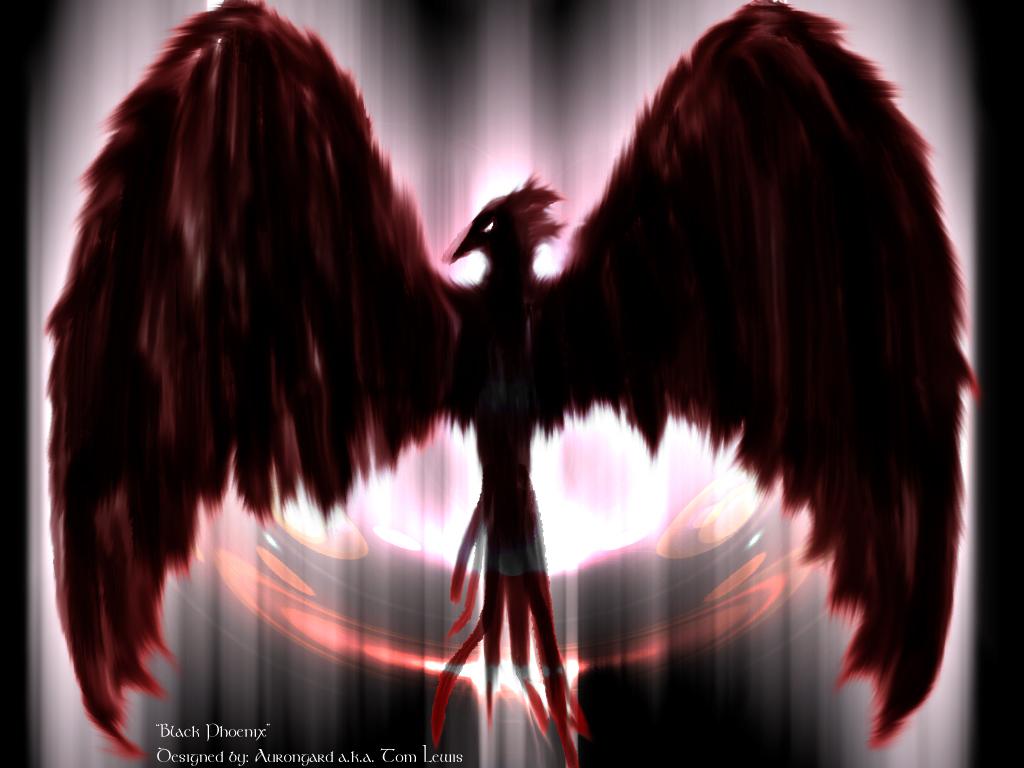 Black Phoenix Wallpaper by Aurongard