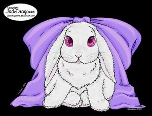 Little Ms Bunny