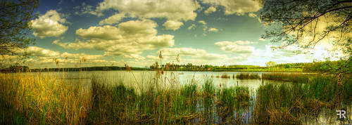 Spring Color in Water by FilipR8