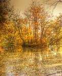 Autumn 2011 XIIII by FilipR8