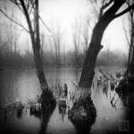 Small Waterscapes Stories I