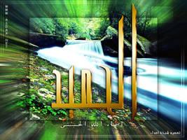 al-7ameed by asdaa2010