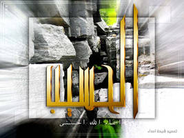 al7aseeb by asdaa2010