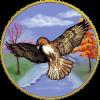 Hawk_Seasons_quarter_size_by_dragonarts.