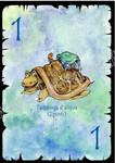 Aenigma Tartaruga di Mare