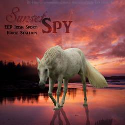 Sunset Spy by LillyGSSkye