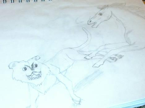 Horse and Wild cat