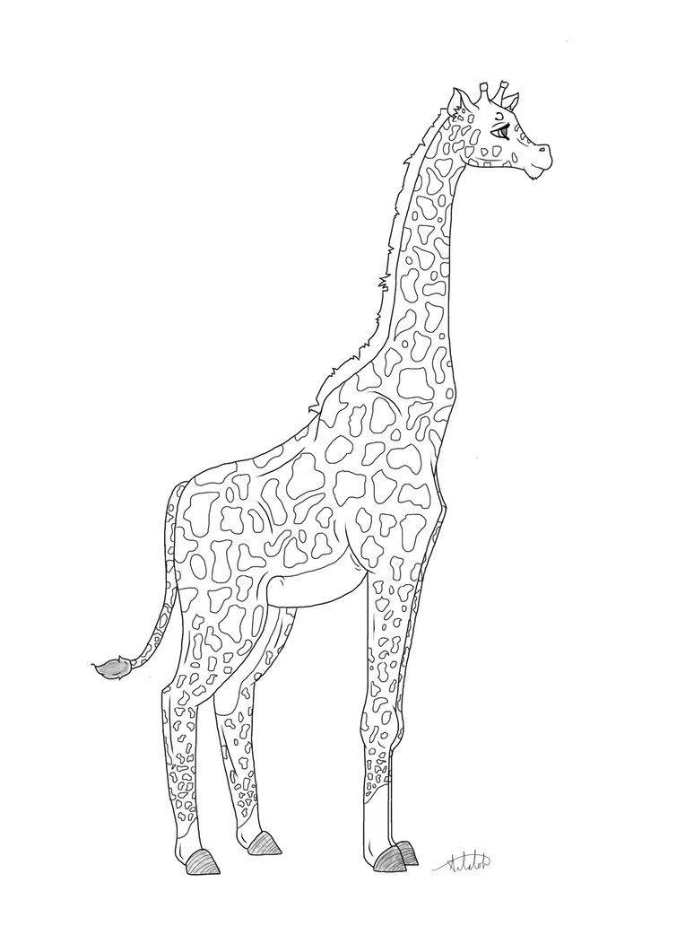 Line Art Giraffe : Giraffe lineart by chatoyant on deviantart