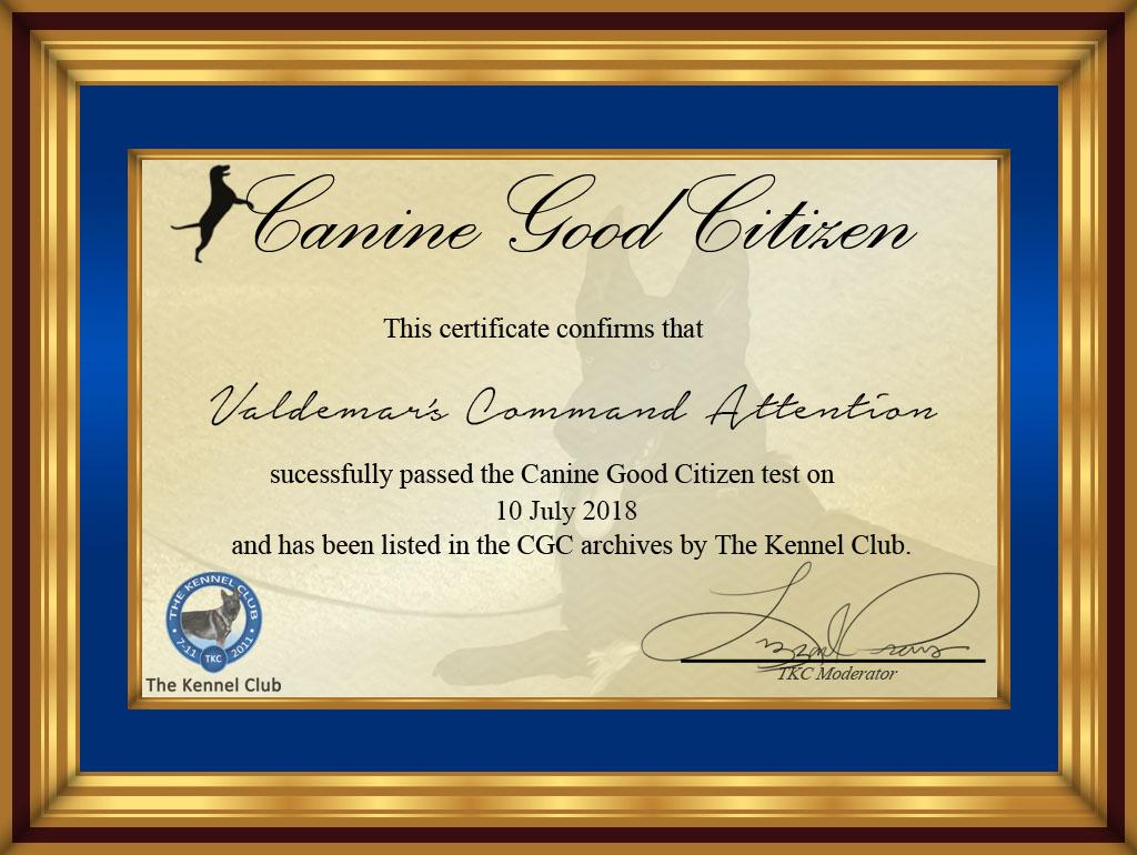 Cgc Valdemars Command Attention By Tkc Admin On Deviantart