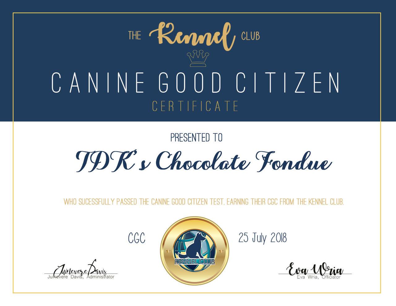 Cgc Tdks Chocolate Fondue By Tkc Admin On Deviantart