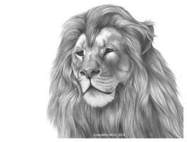 Roaring Like a Lion by GrzediKrk