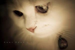 soft glance2 by rami777