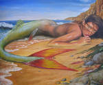 Beached Mermaid Fin