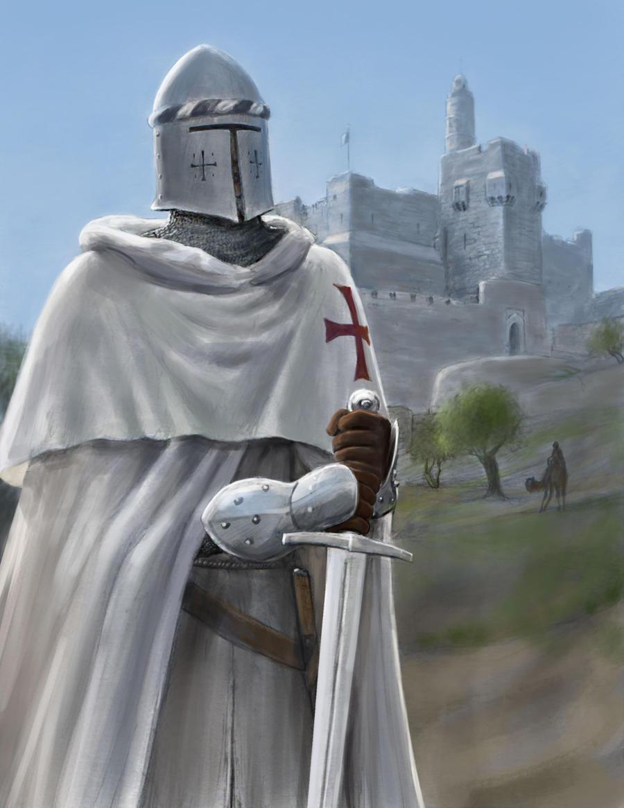 Templar of the Citadel by dashinvaine on DeviantArt