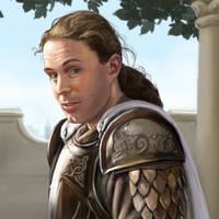 Kingsguard by dashinvaine