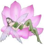 fairy sleeping coloured
