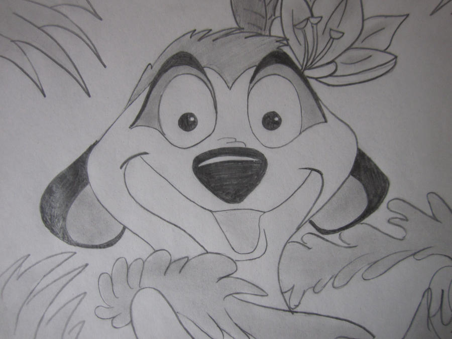 Lion king drawings in pencil
