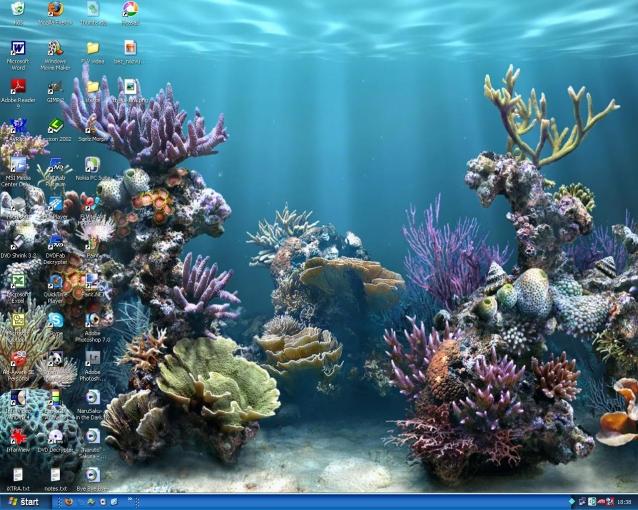 my newest desktop :D by daniellawhiteenergy