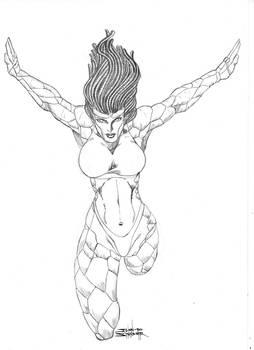 Sketch Commission Nov 24