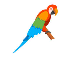 Cartoon Parrot Vector by superawesomevectors