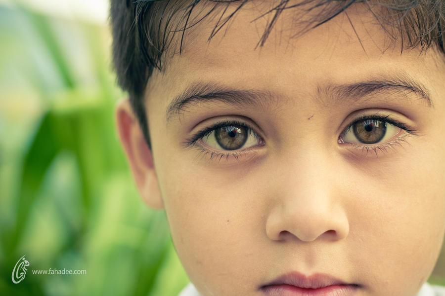 Kite in Eyes by fahadee