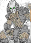 predator - color -WIP