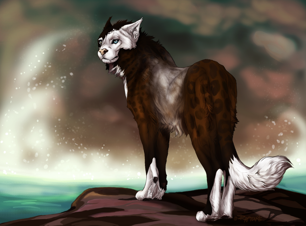 how were we to know by sevas-tra
