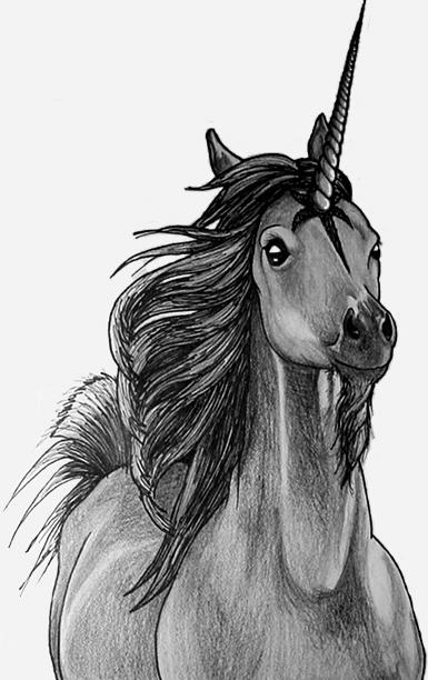 How to draw realistic unicorn