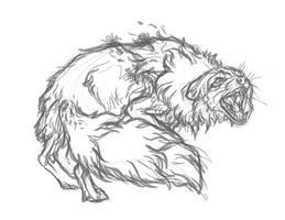 Foxglove Sketch2 by markedwolf