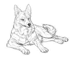 Aretsu Sketch by markedwolf