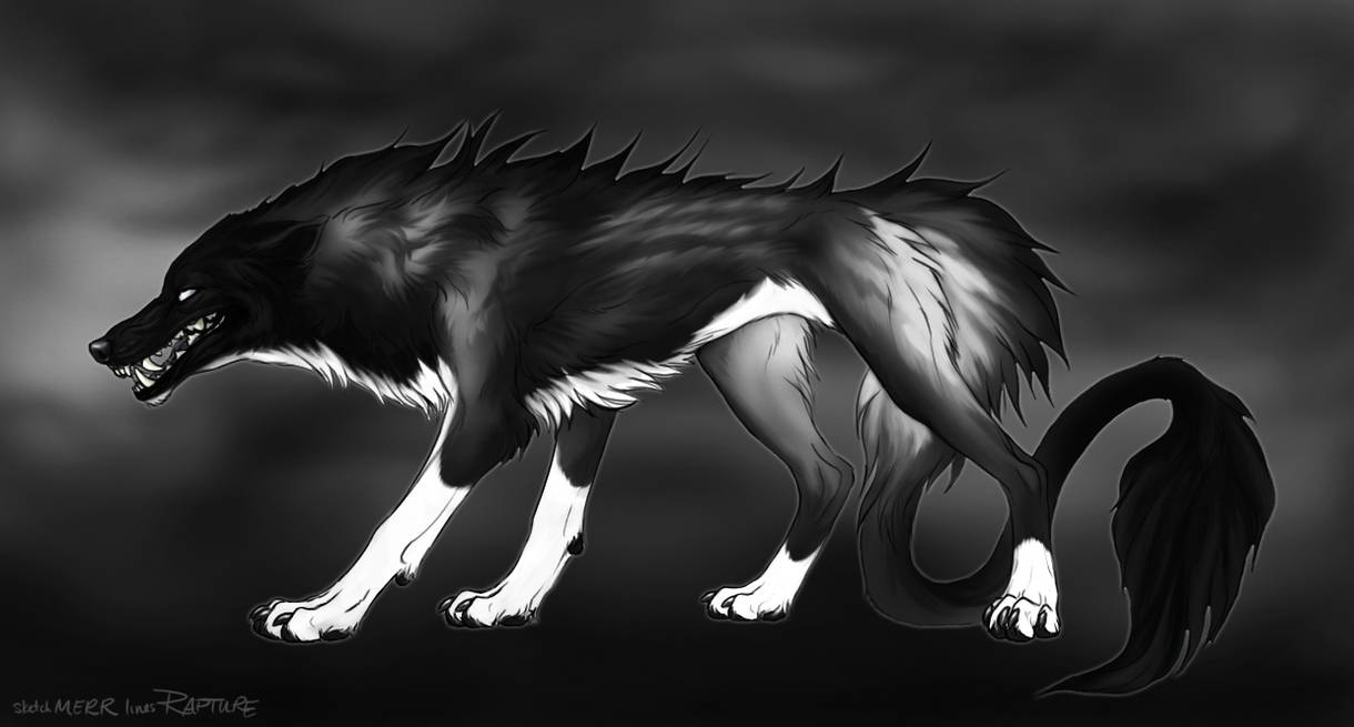 Barghest Wolf #2 by markedwolf