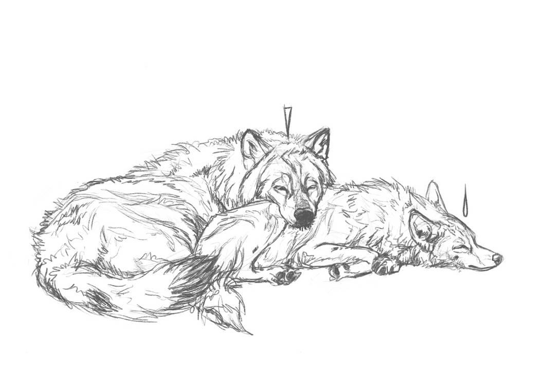 111 by markedwolf