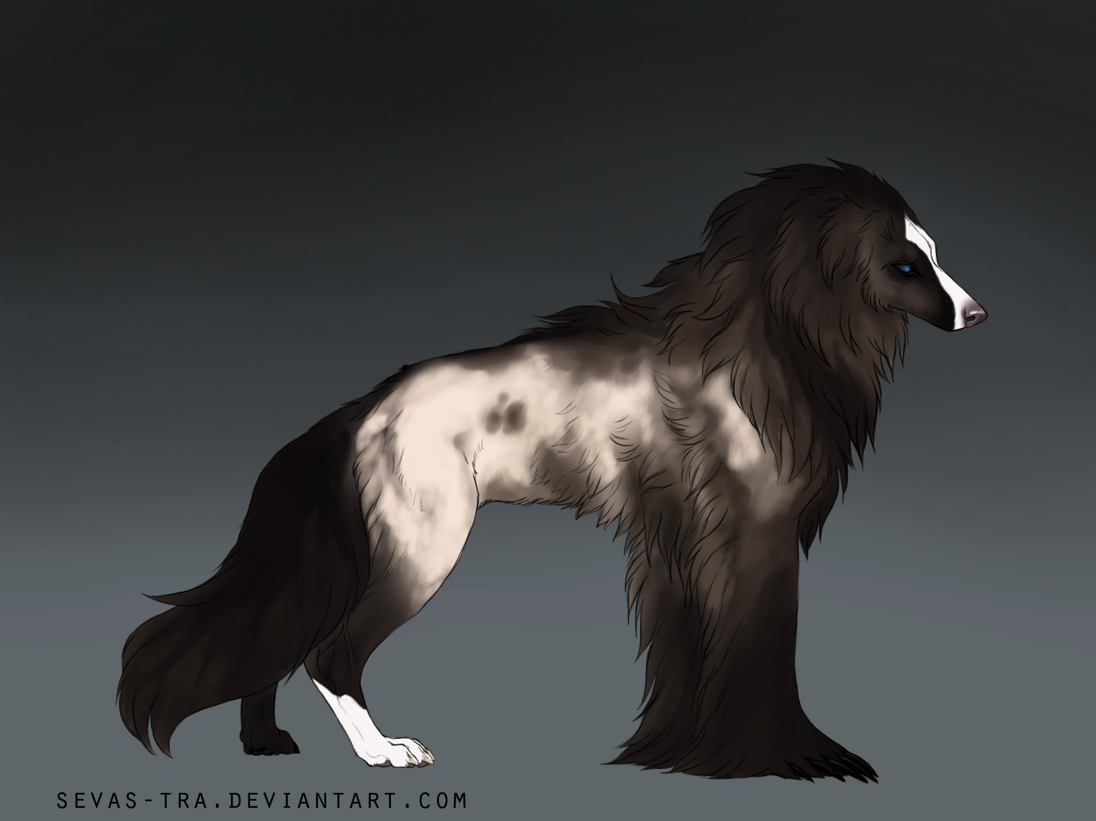 Silky Beardog #91 by markedwolf