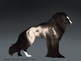 Silky Beardog #91 by markedwolf