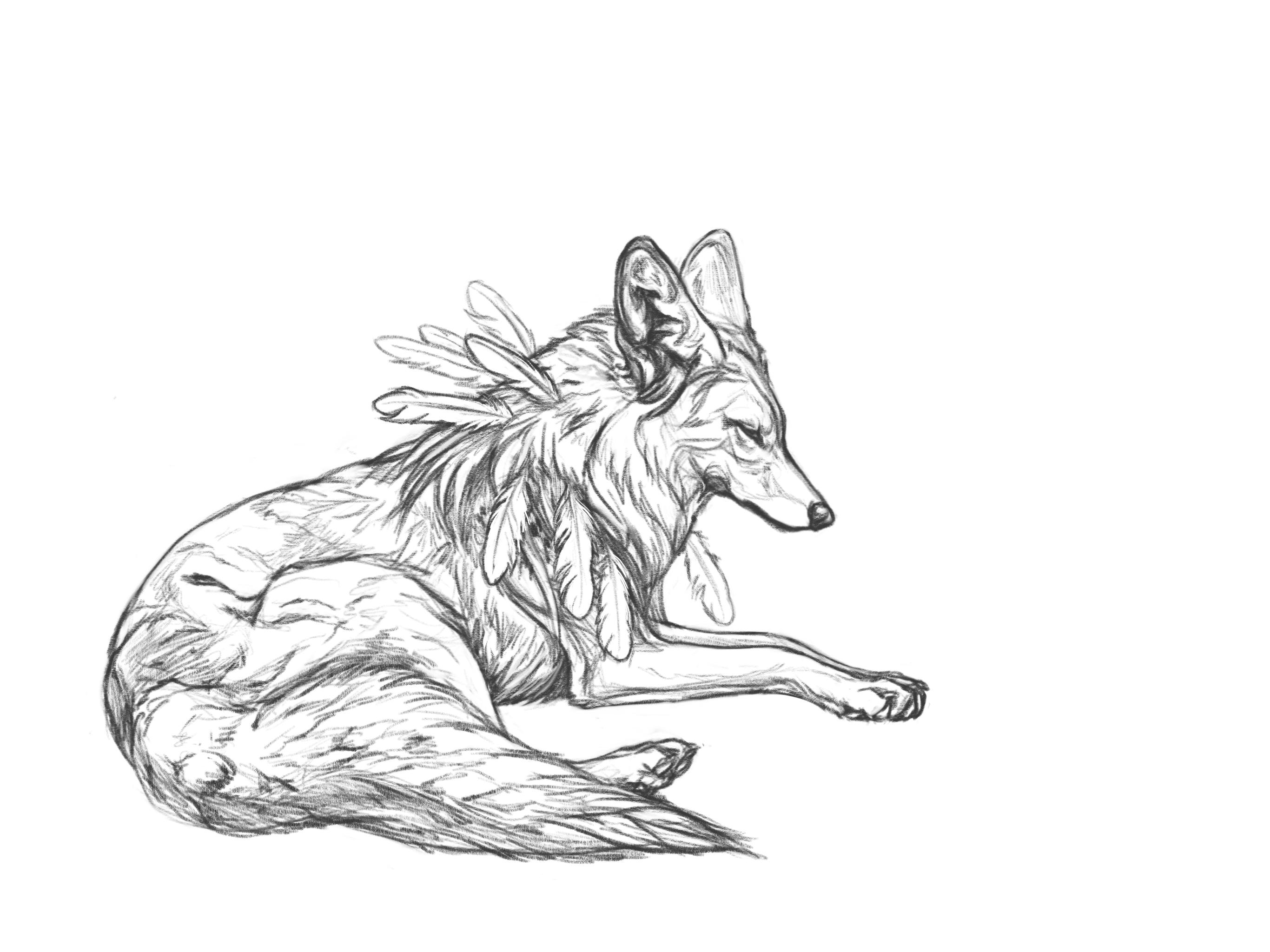 kotori by markedwolf