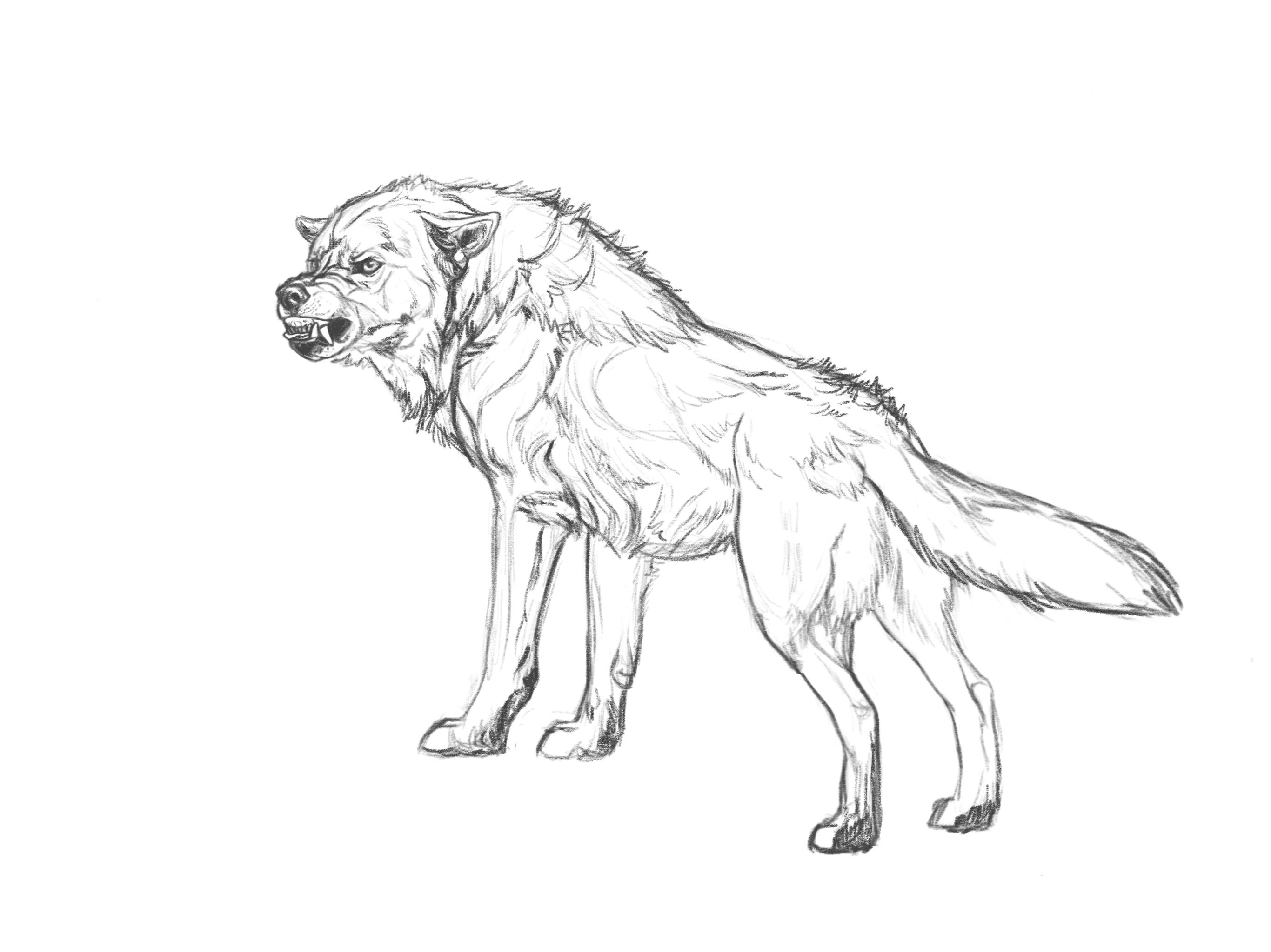 Hatchet by markedwolf