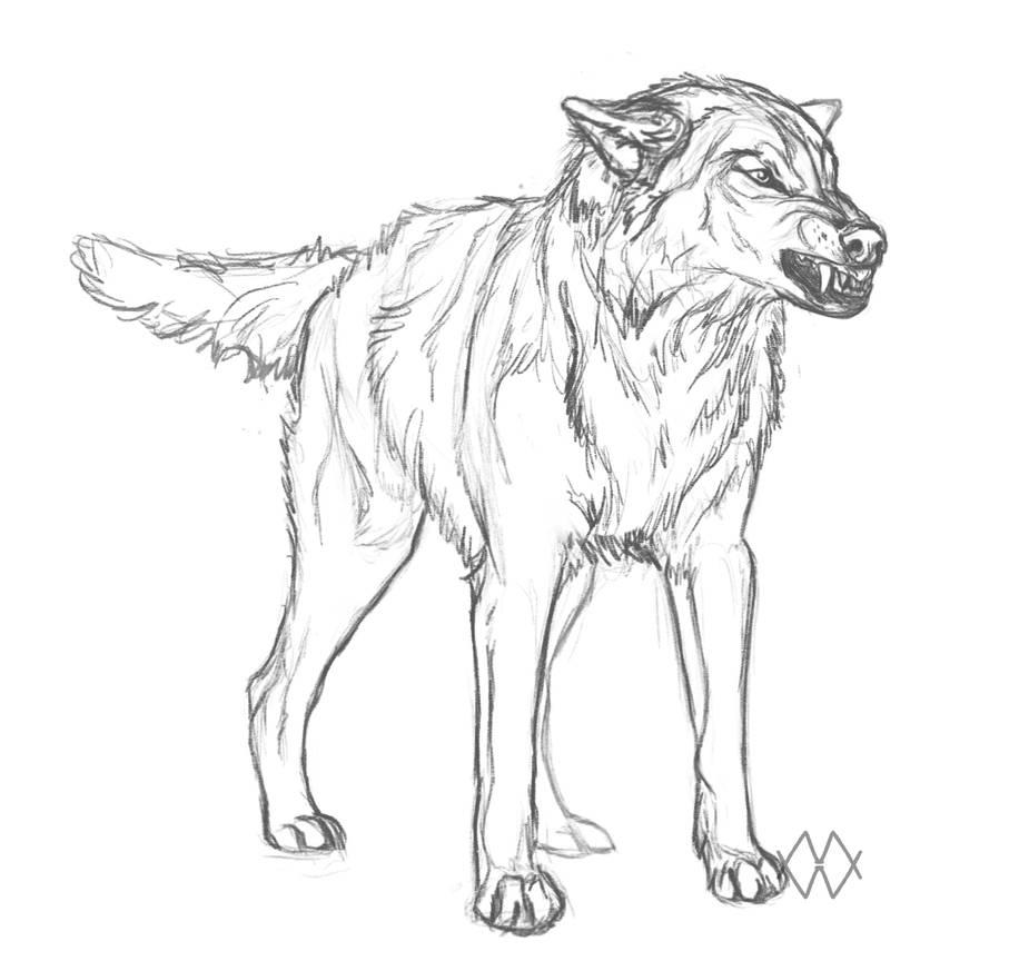 Usaeris by markedwolf
