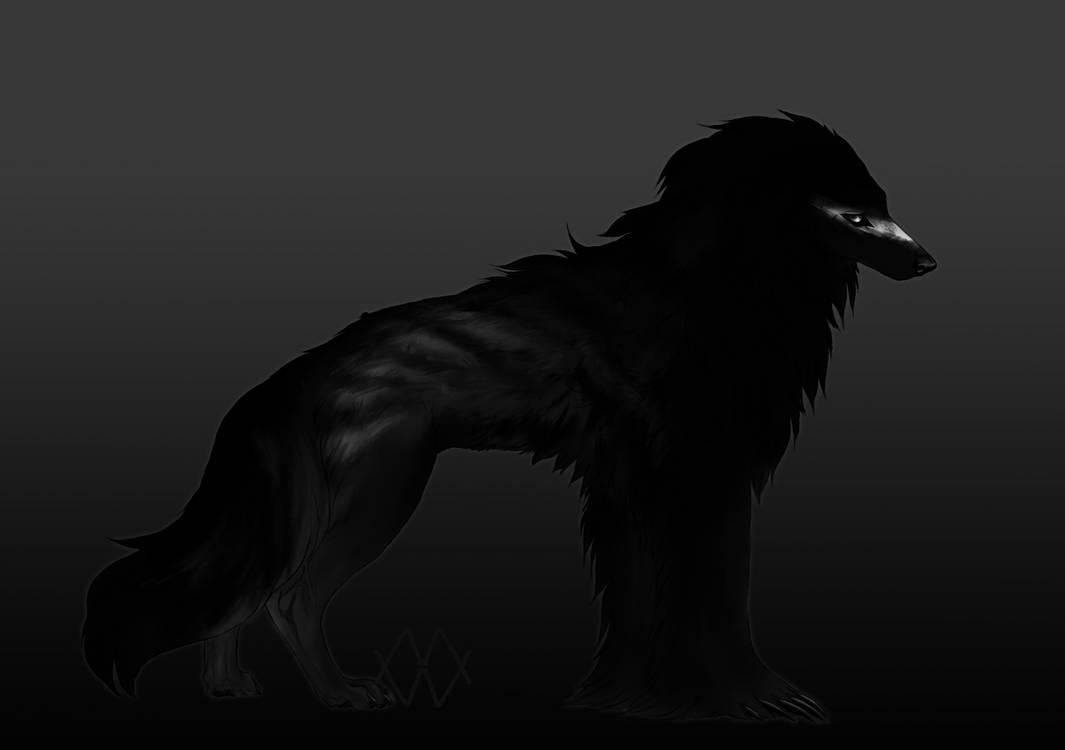 Silky Beardog Auction by markedwolf