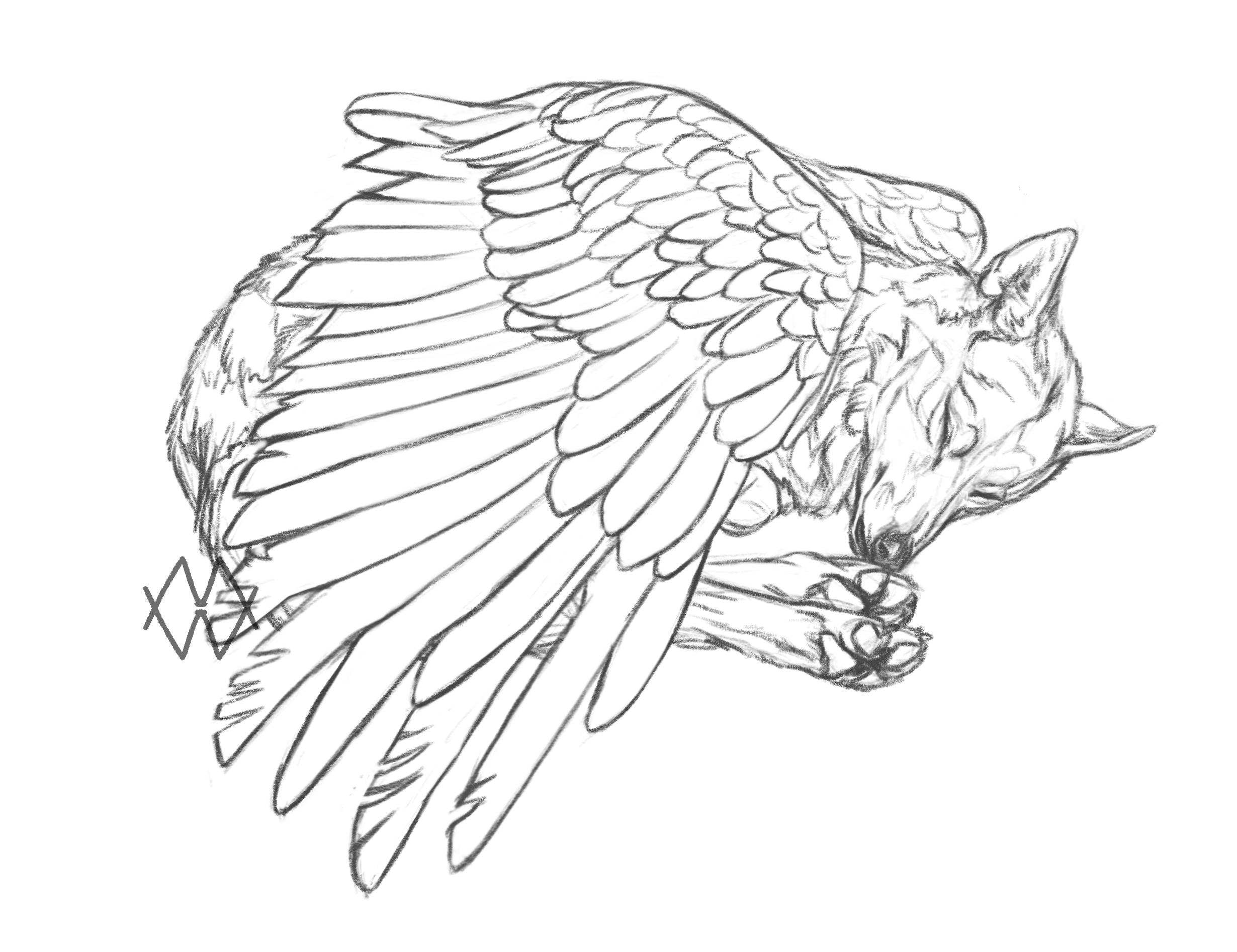 Montagnais by markedwolf