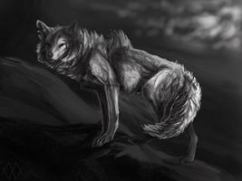 Illuminate Me by markedwolf