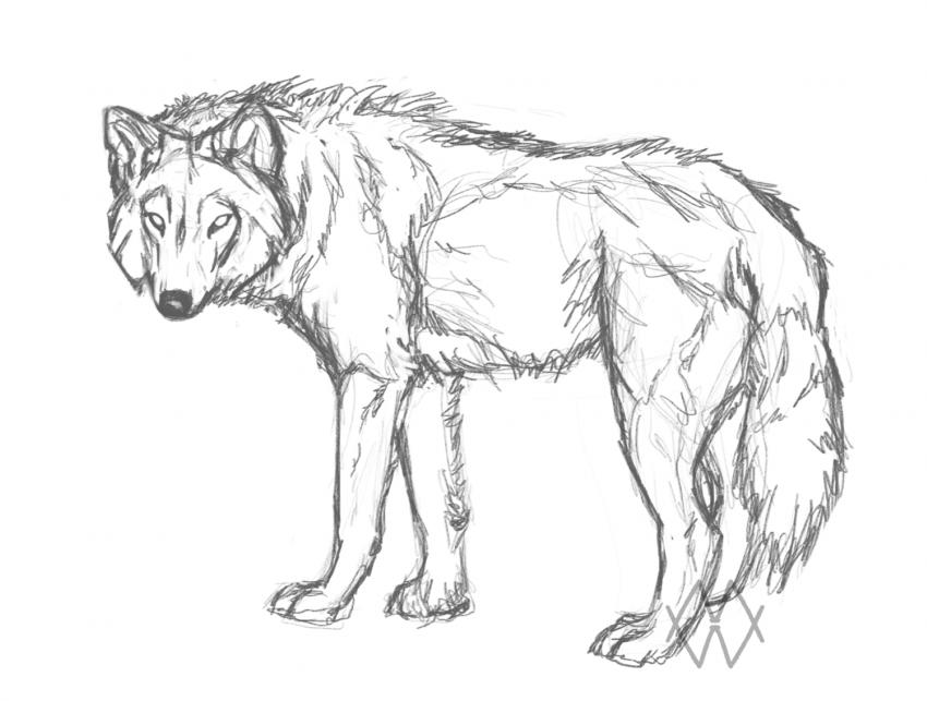 YCH 2 by markedwolf